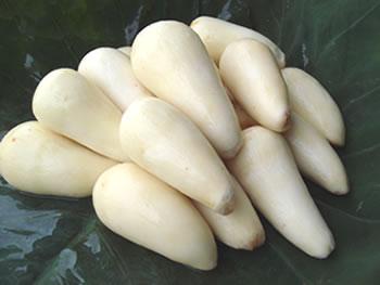 蔵王産洗い里芋