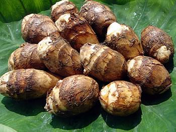 山形県産土里芋