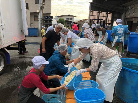 第30回日本一の芋煮会フェスティバル洗い里芋袋詰め